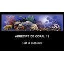 Arrecife de Coral 11