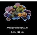Arrecife de Coral 14