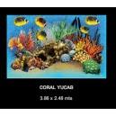 Coral Yucab