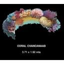 Coral Chancanaab